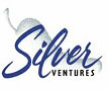 Silver Ventures Logo.jpg