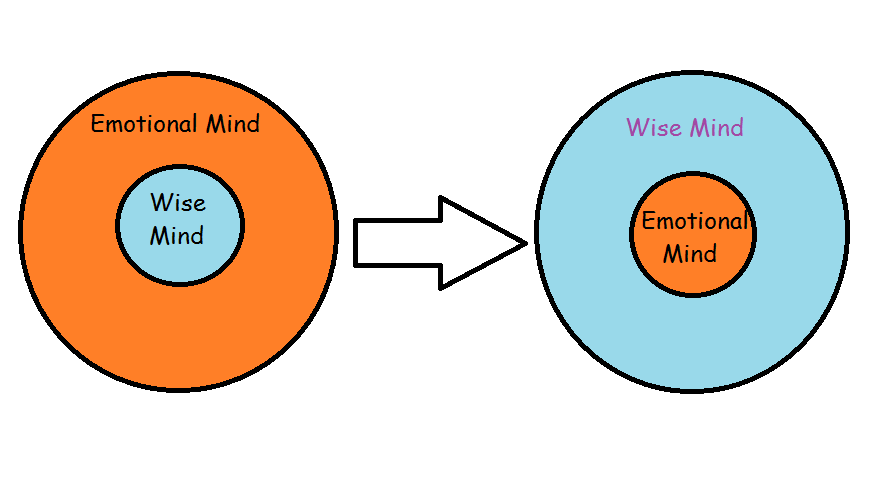The emotional mind in control - versus the wise mind.