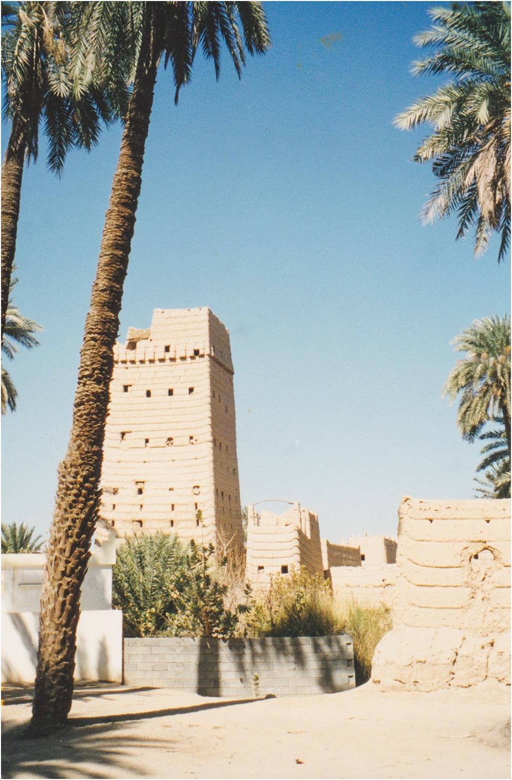 Najran, Saudi Arabia village I visited when I was 10!