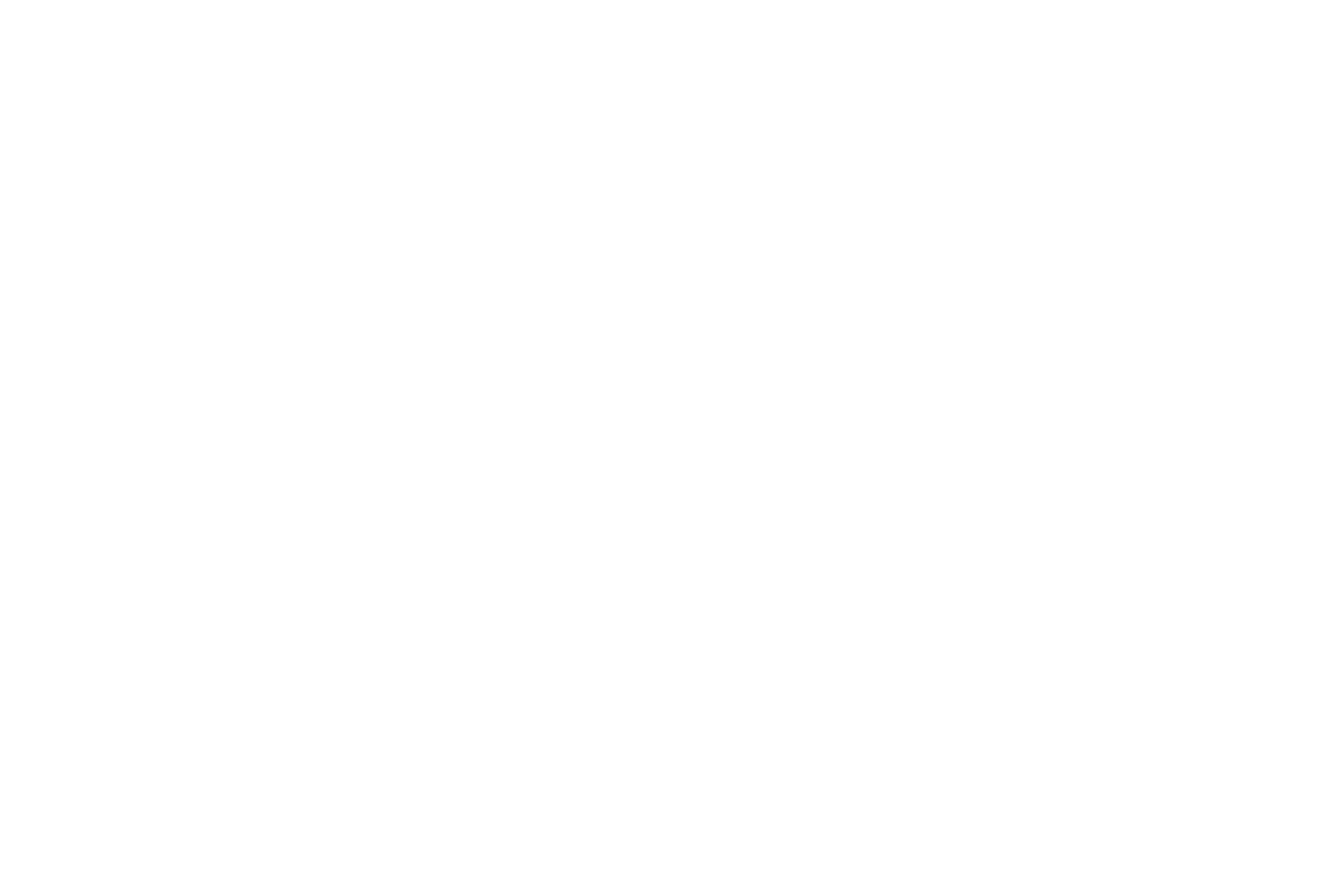 Logo Diapositief.png