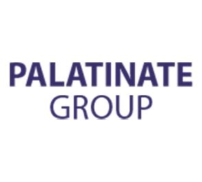 Palatinate Group.png