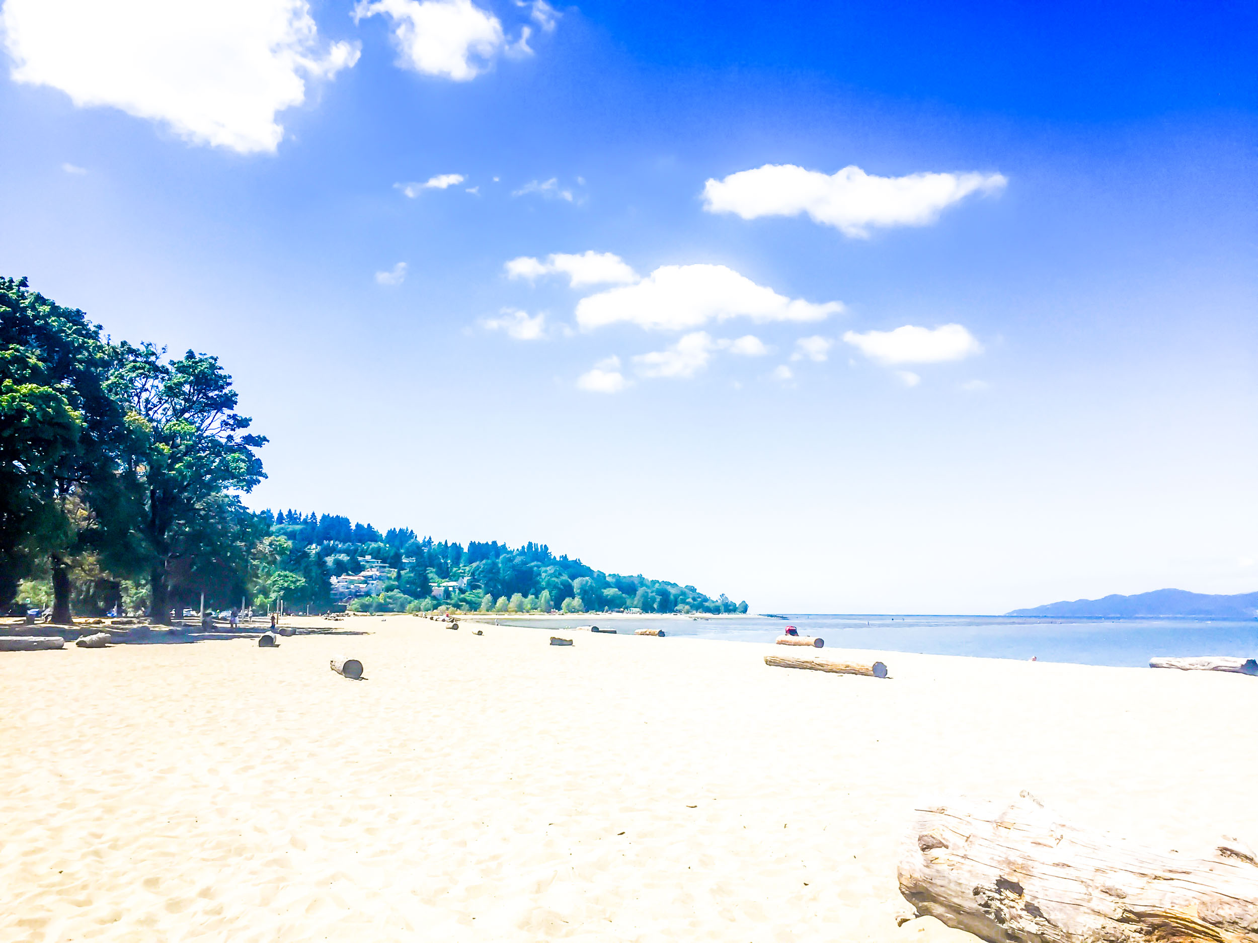 A summer's day on Jericho Beach, Vancouver.