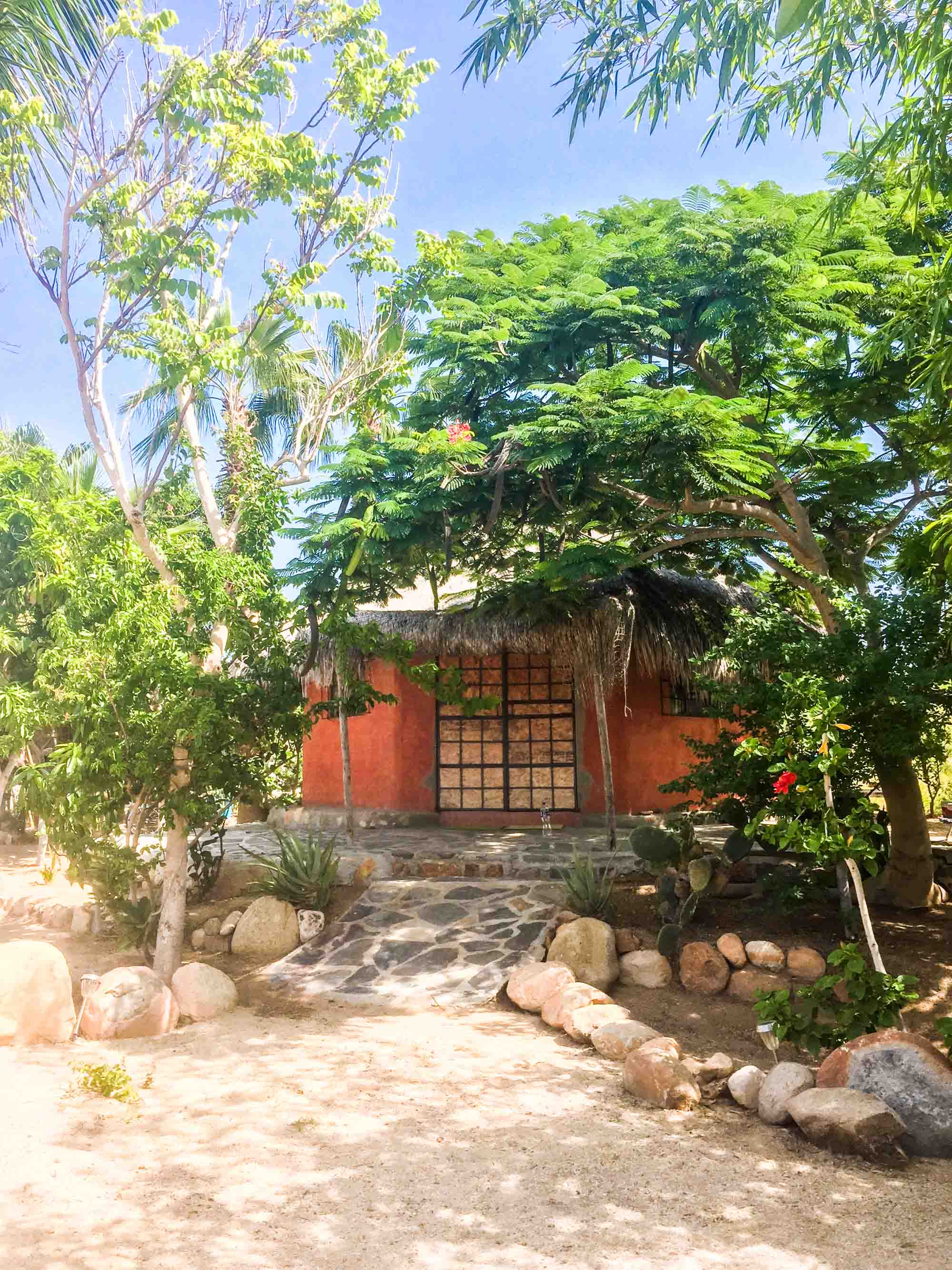 An Airbnb in Todos Santos, a remote, private stone hut surrounded by tropical trees, plants and wildlife. Mexico.