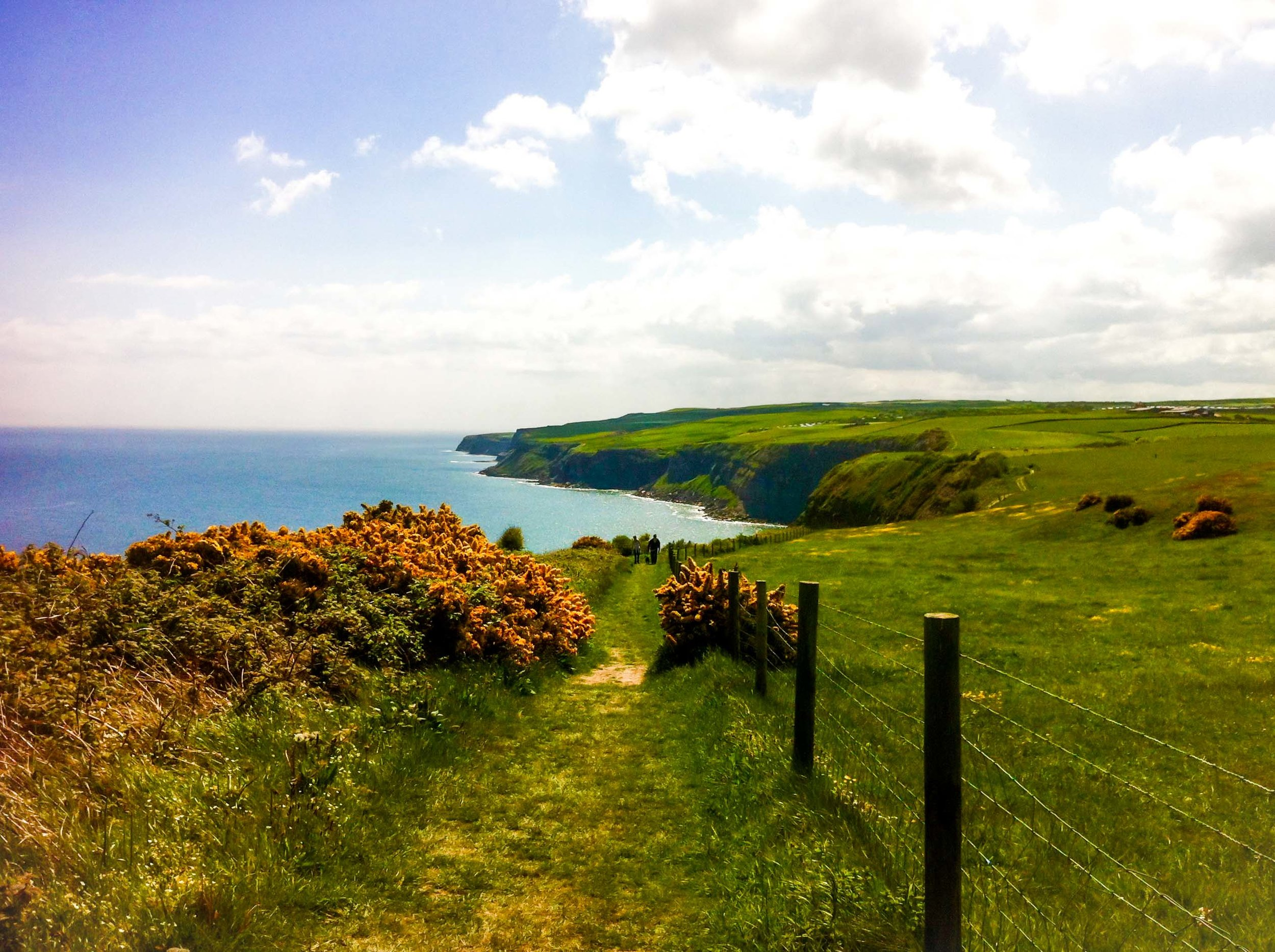 The Cleveland Way coastal walk from Whitby to Robin Hood's Bay, Yorkshire, England.