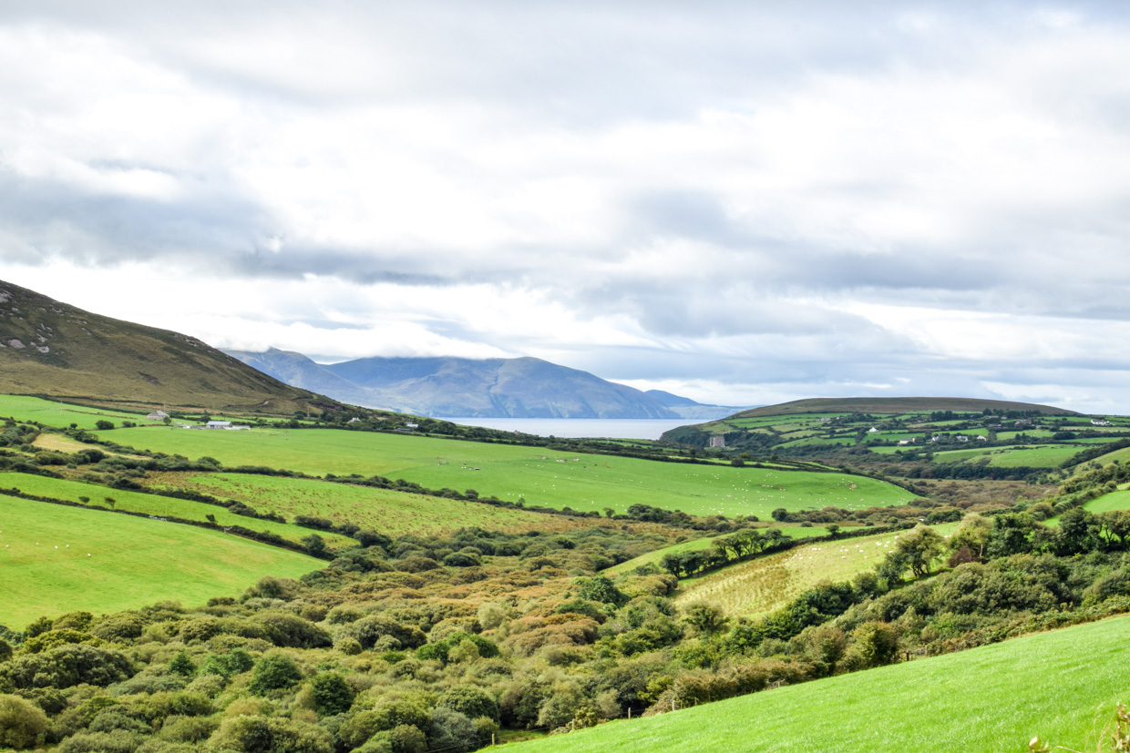 Rolling hills of the county Kerry countryside in Bunaneer, Ireland. Part of a Killarney to Dingle road trip, via Slea Head drive.
