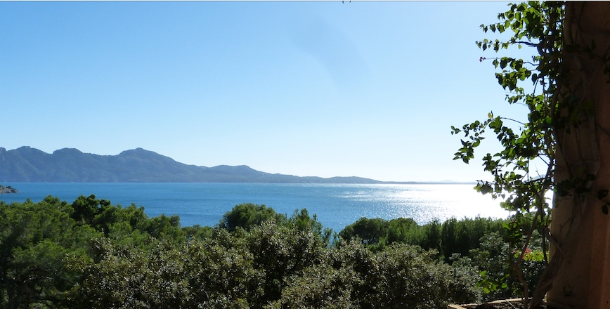 The view from our work place for the next 12 months….lucky us!