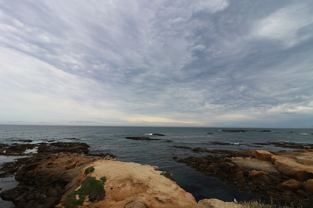 Lovely view at Shag Point