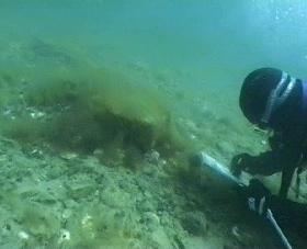 Programme d'échantillonnage en plongée sous-marine