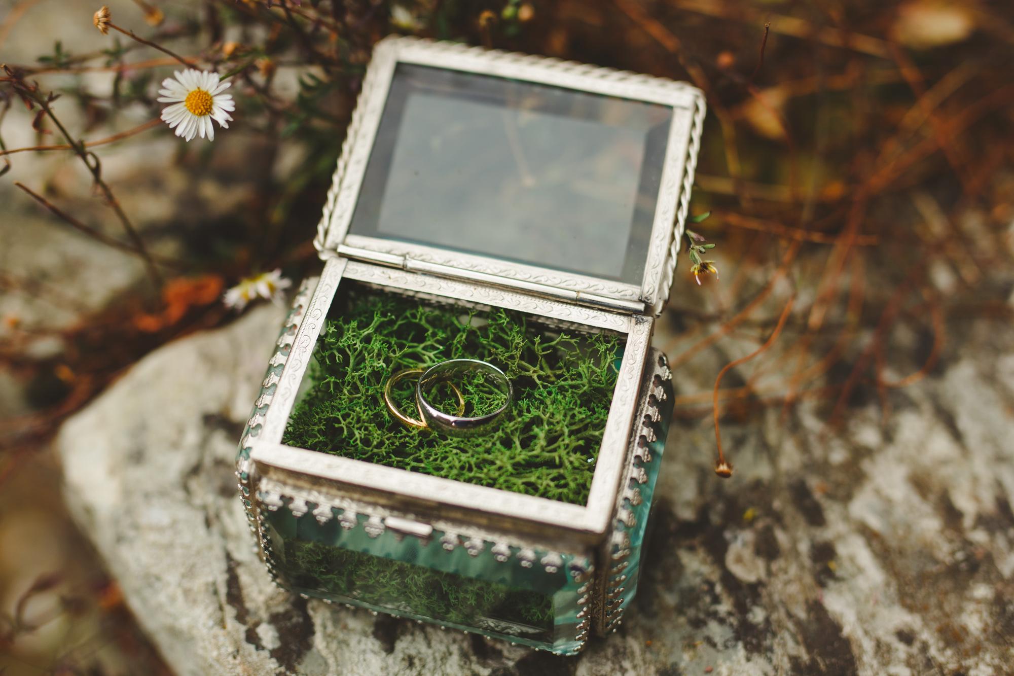 hestercombe-taunton-wedding-photography-camera-hannah-5.jpg