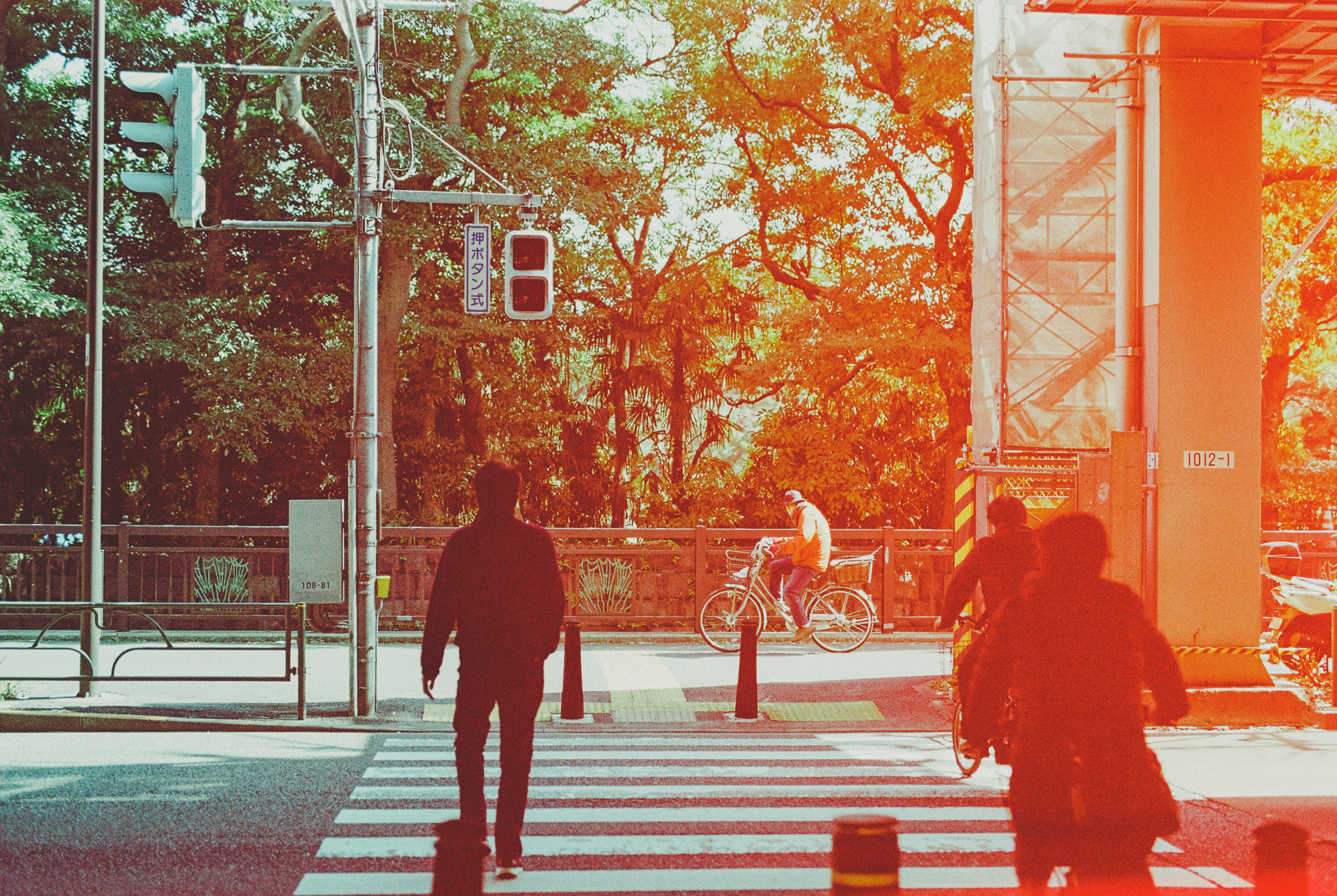 travel-photographer-tokyo-35.jpg