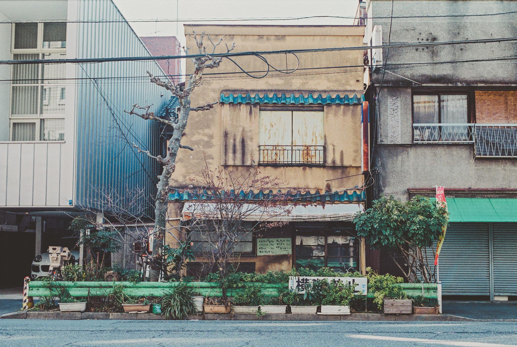 travel-photographer-tokyo-40.jpg
