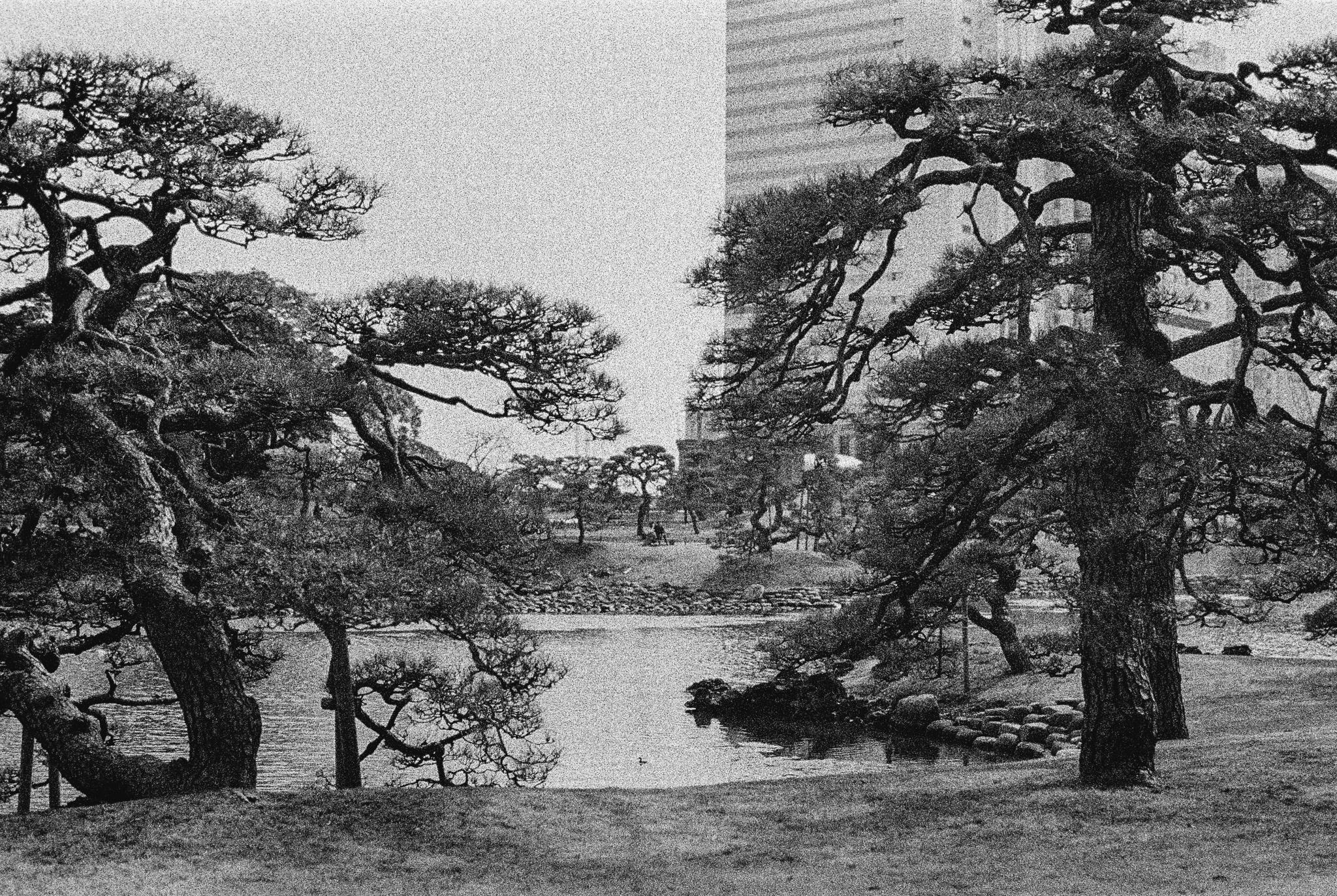 travel-photographer-tokyo-42.jpg