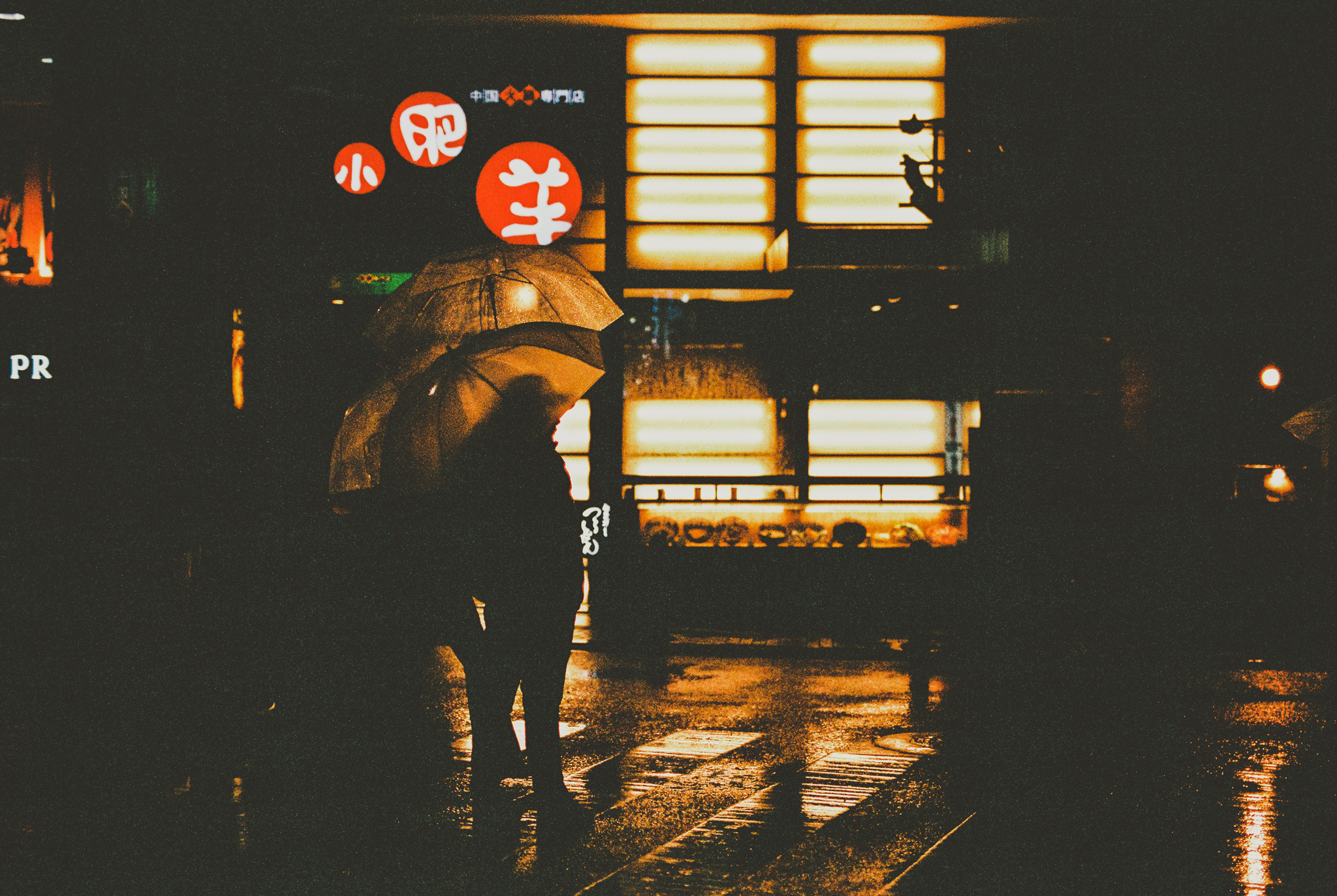 travel-photographer-tokyo-72.jpg