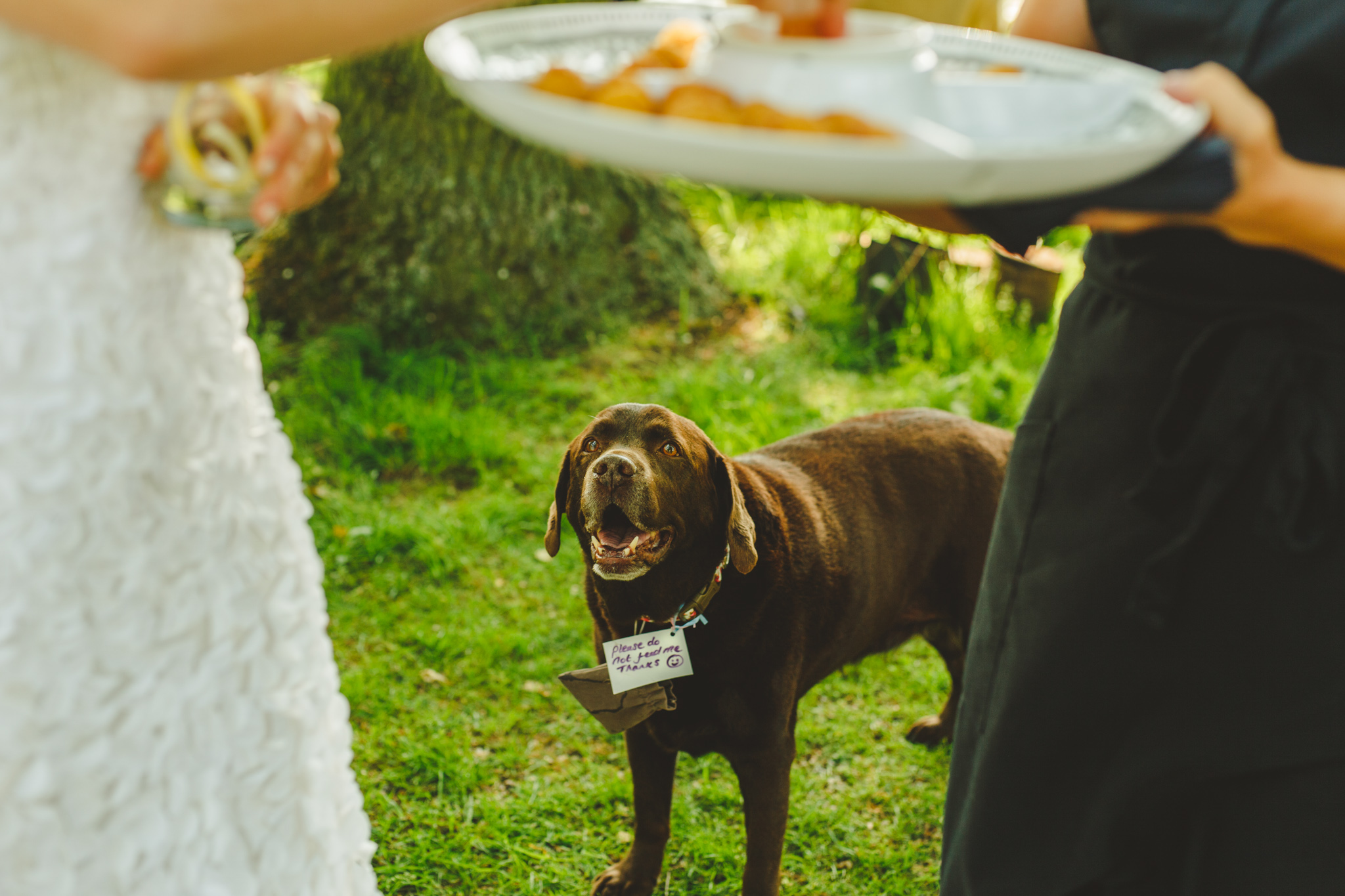 derbyshire-wedding-photographer-videographer-camera-hannah-5.jpg