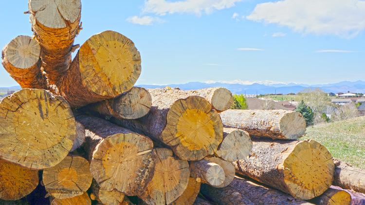 milling-wood-end.jpg