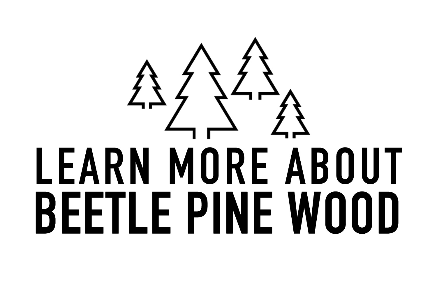 learn-more-about-beetle-pine-from-colorado-tables.jpg
