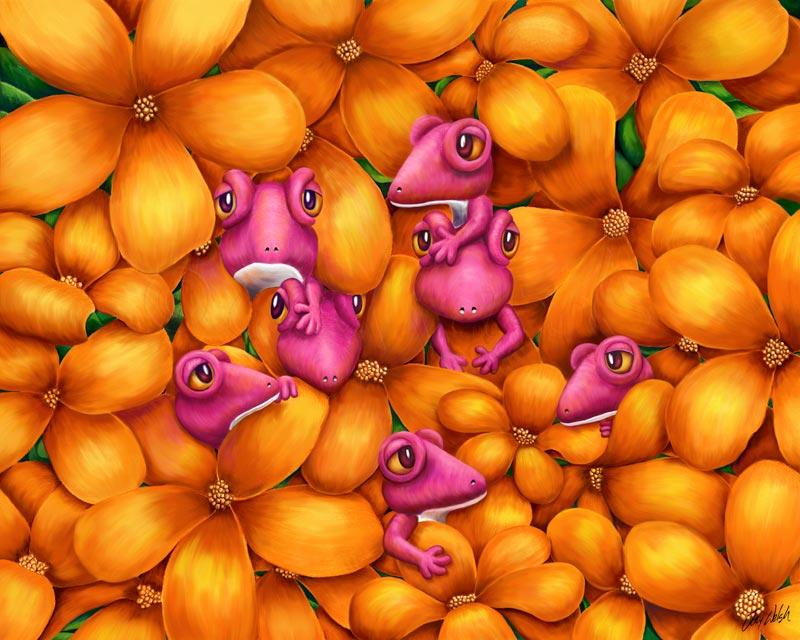 MulberryGekkards.jpg