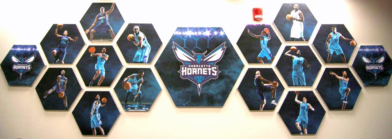 Matrix Frame - Charlotte Hornets Honeycomb Players Wall