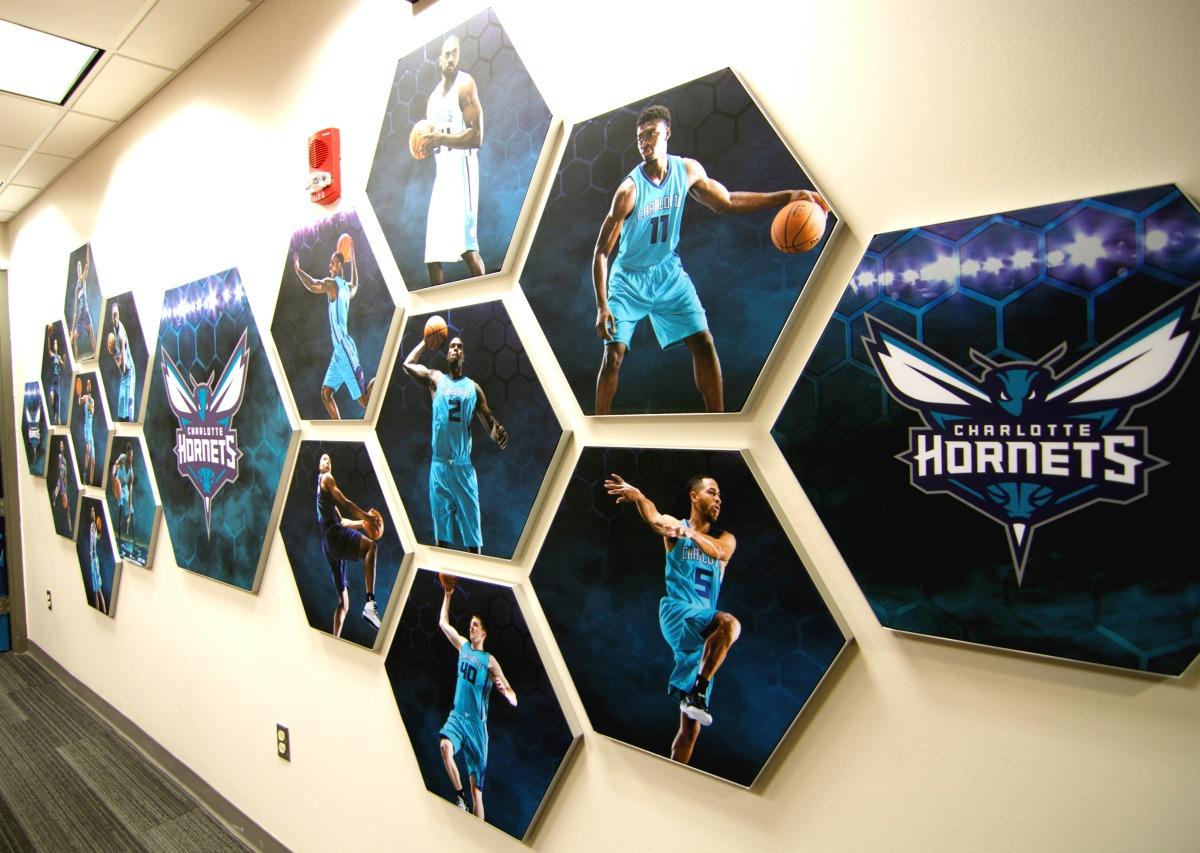 Hornets Matrix Frame Honeycomb Players Wall