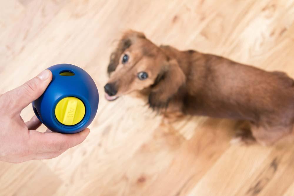 sbark-tikr-dog-treat-toy.jpg