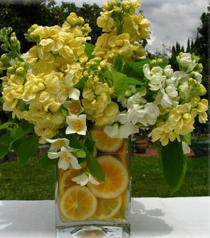 1. Yellow daffodilswith orange slices