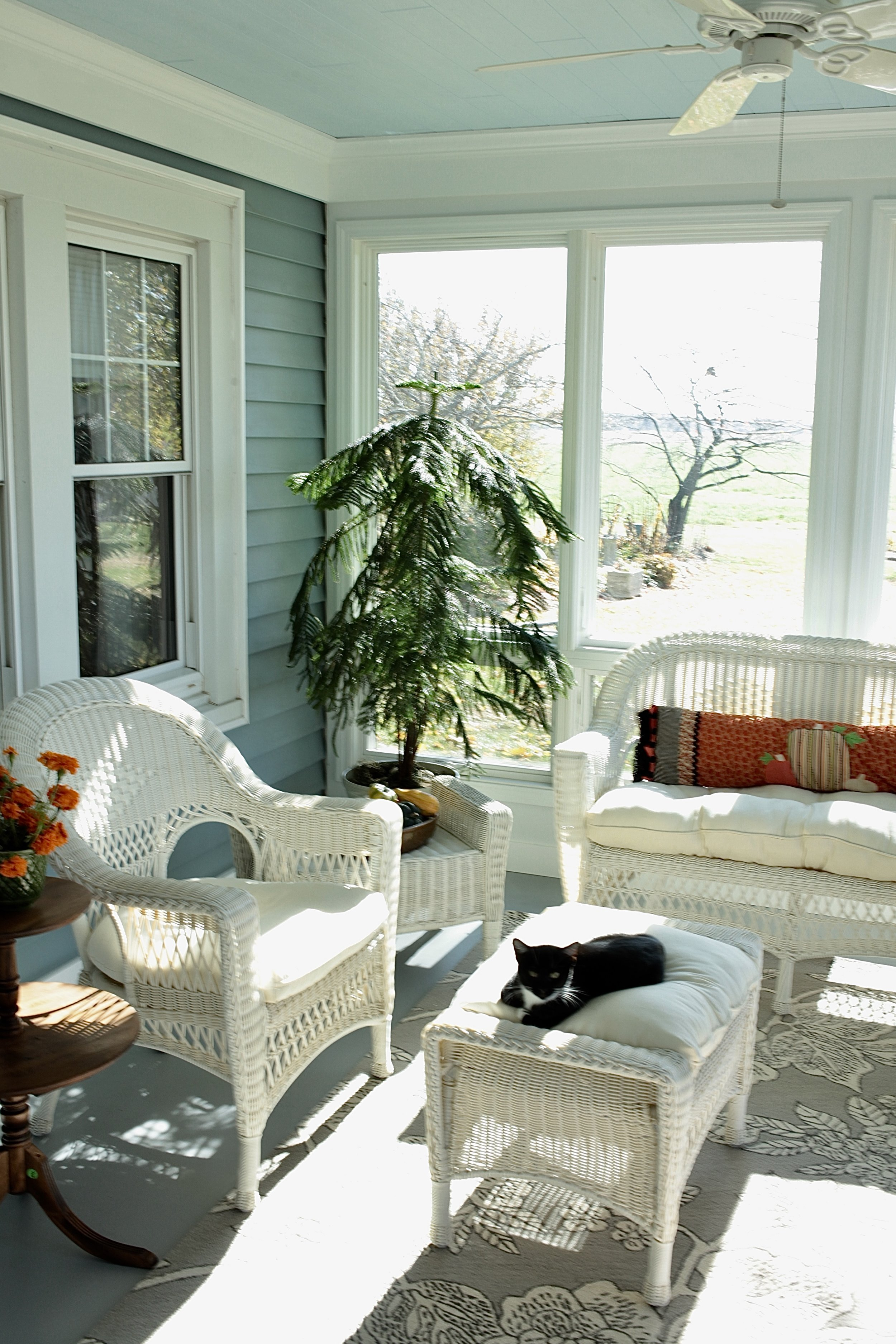 Bright sun room makeover with blue ceiling, wicker chairs, and plants