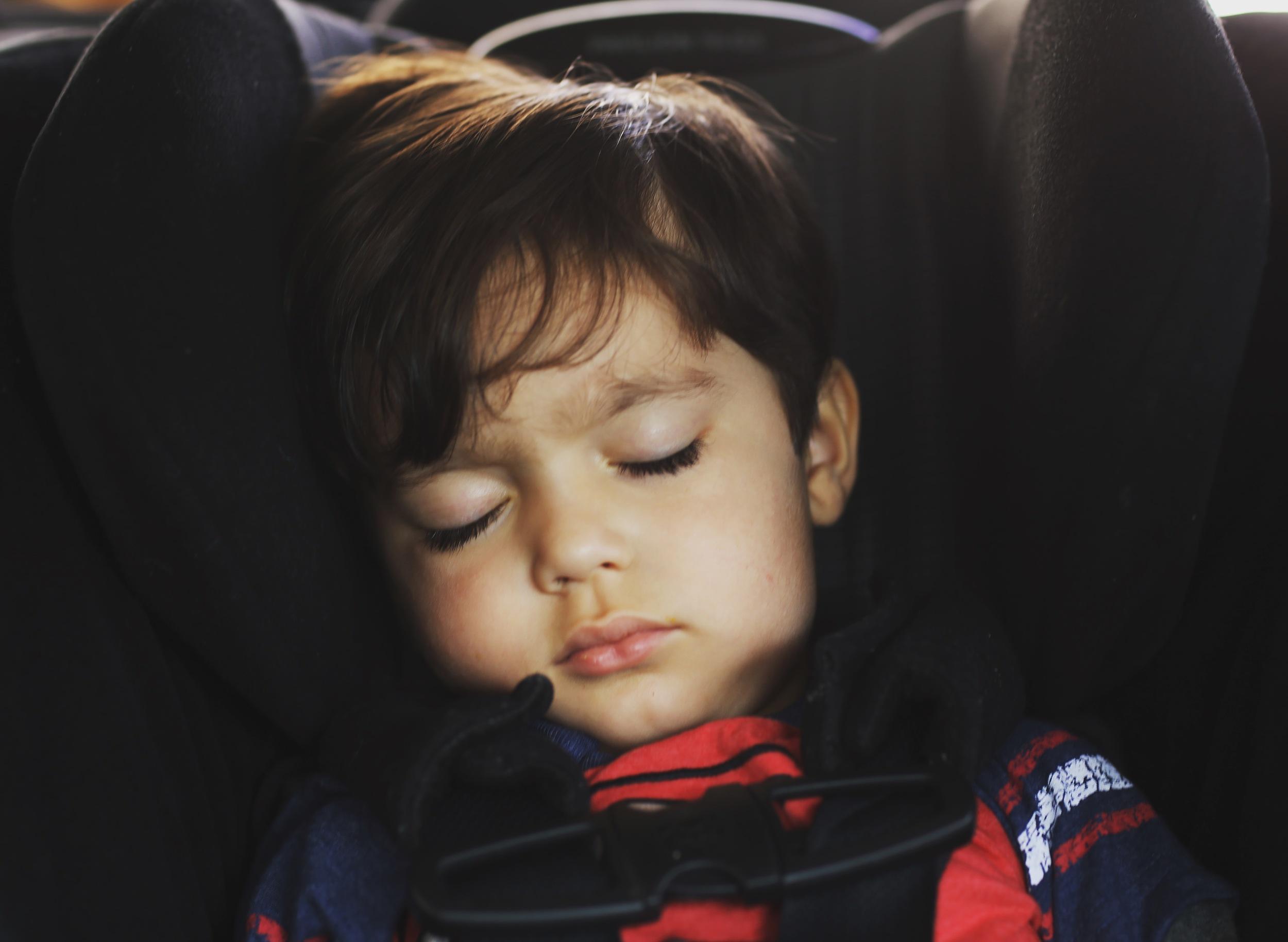 Sleeping Sebastian