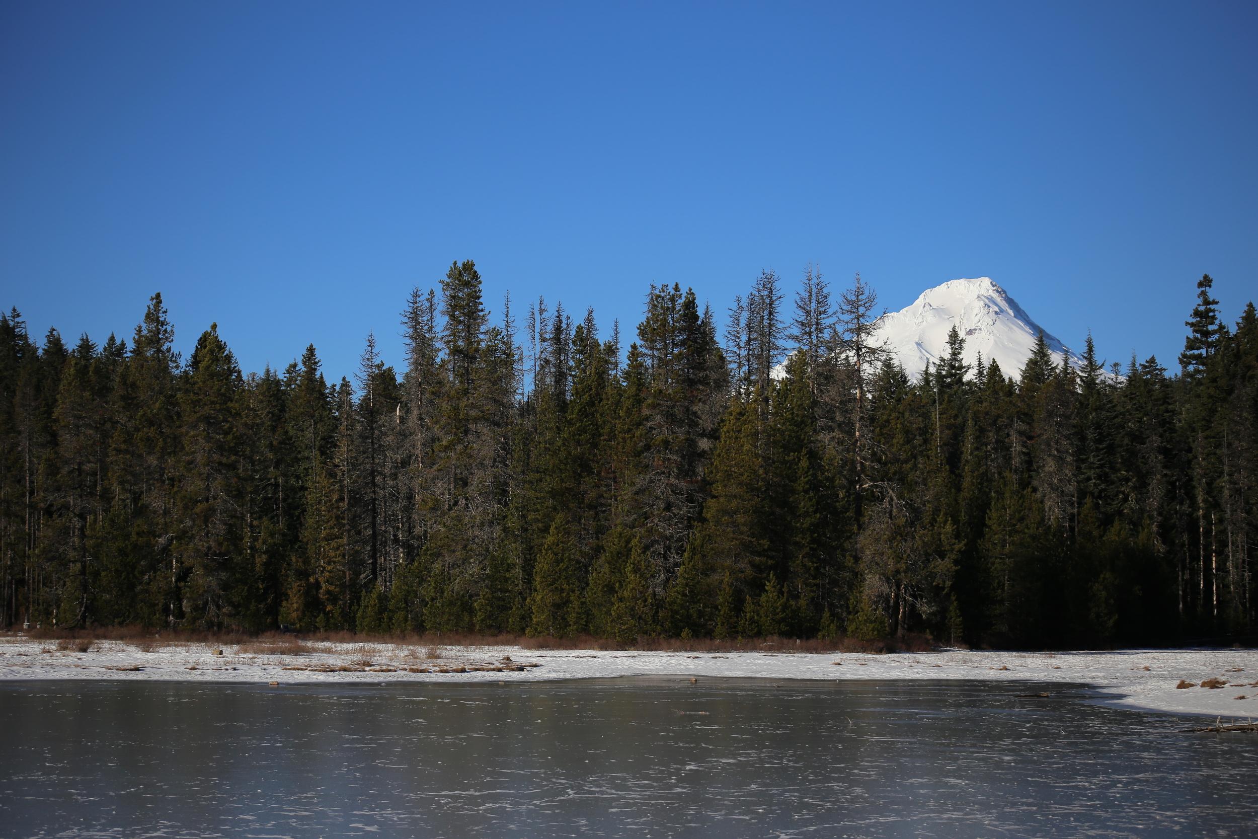 Ice on Frog Lake
