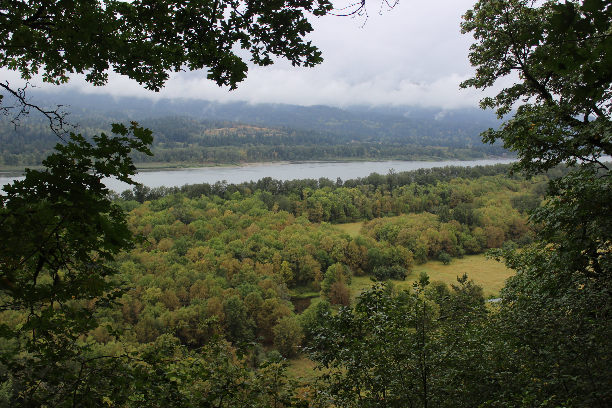 Columbia River views from Horsetail Falls trail