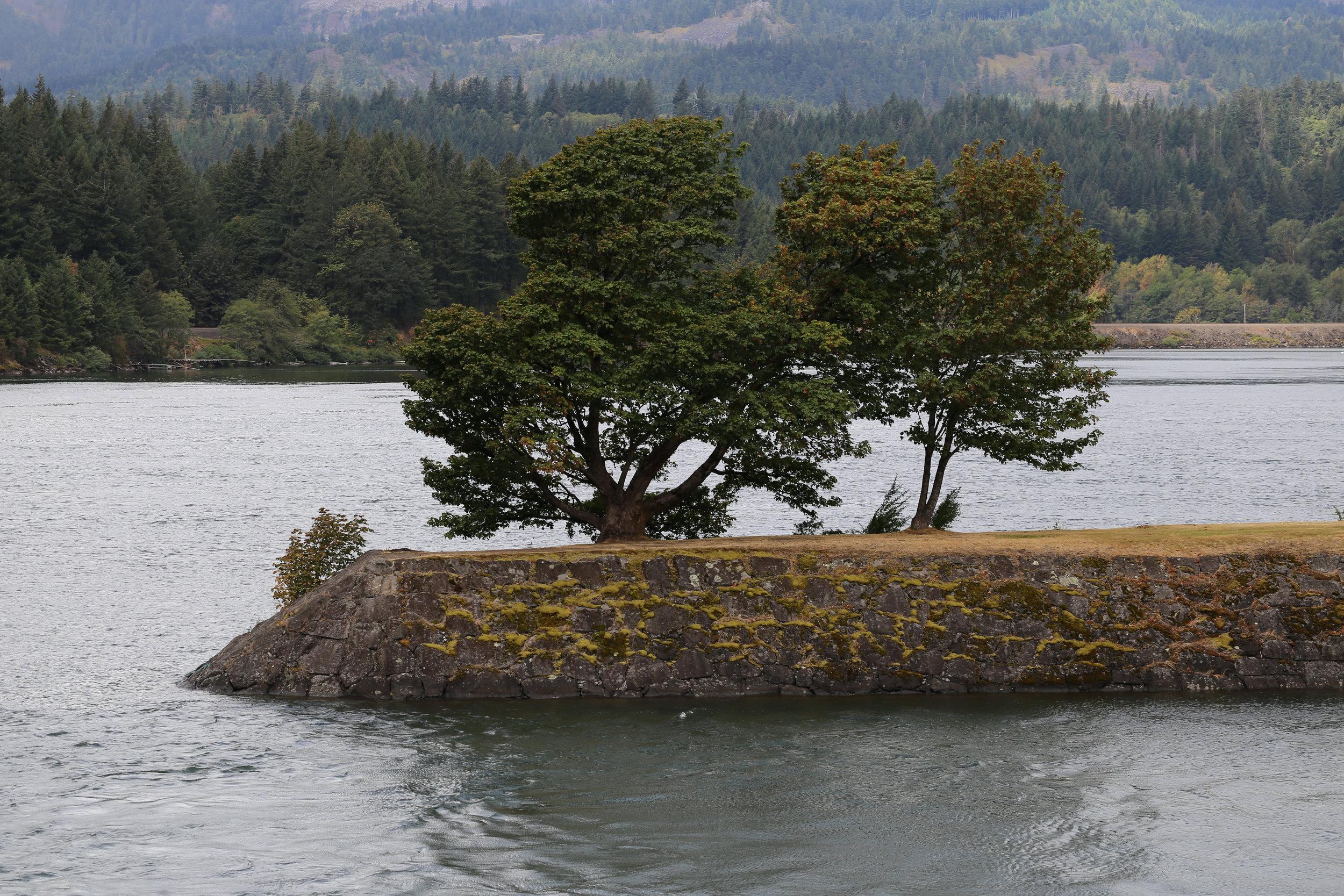 Western tip of Thunder Island