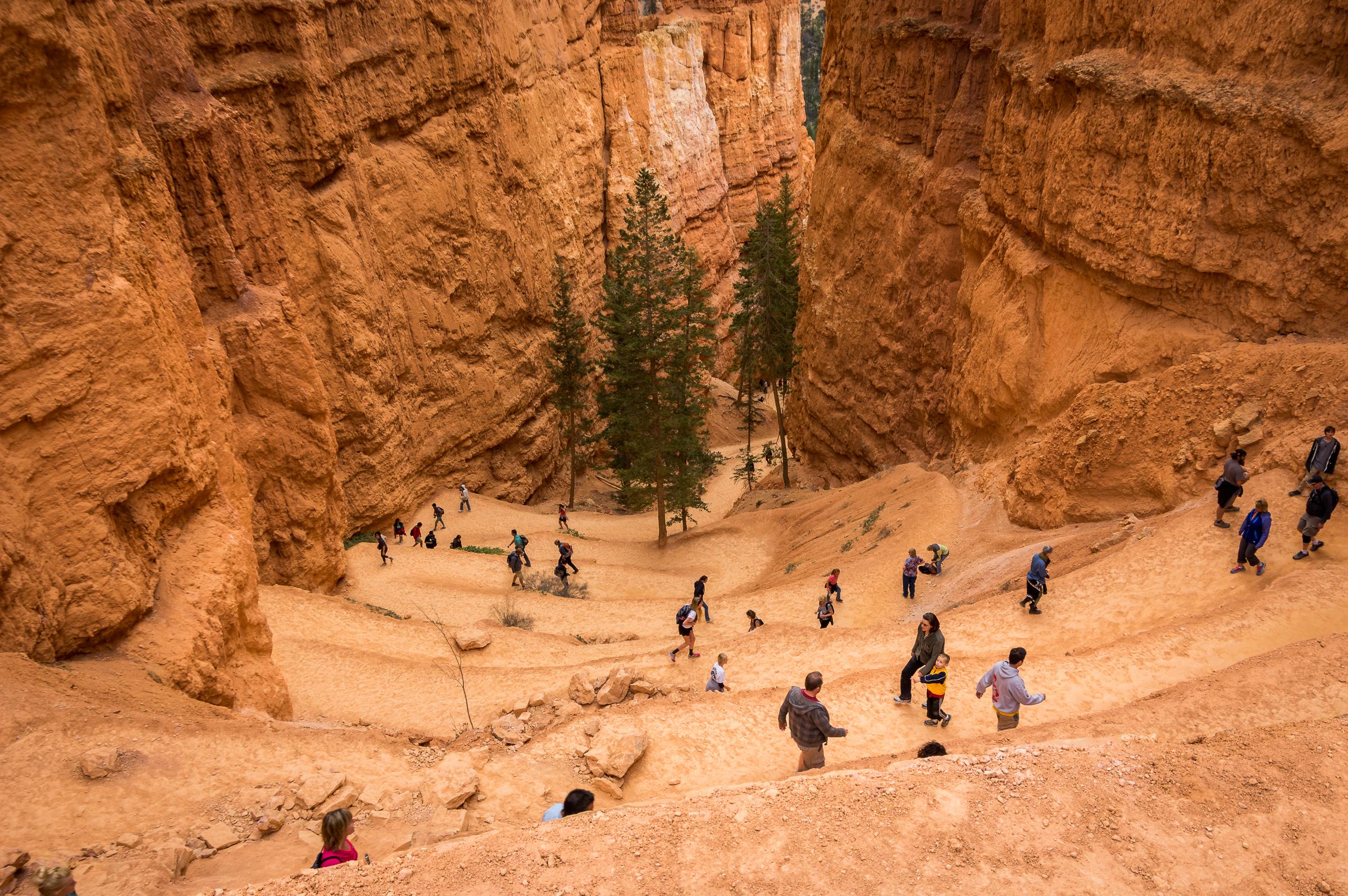 Der kurze Spaziergang wurde doch eine richtige kleine Wanderung. Der Bryce Canyon verlangt förmlich danach.