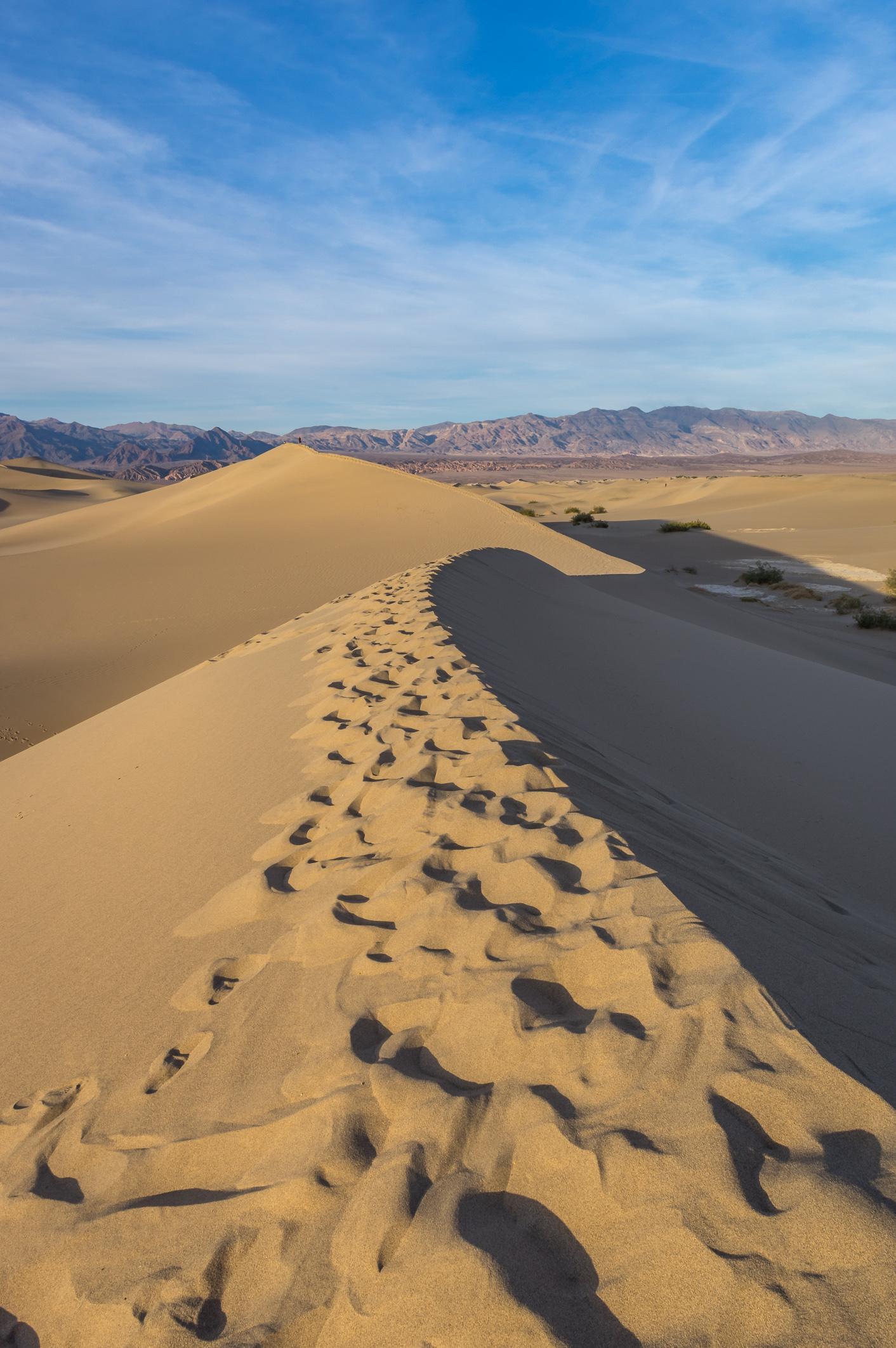 So muss eine Wüste aussehen!