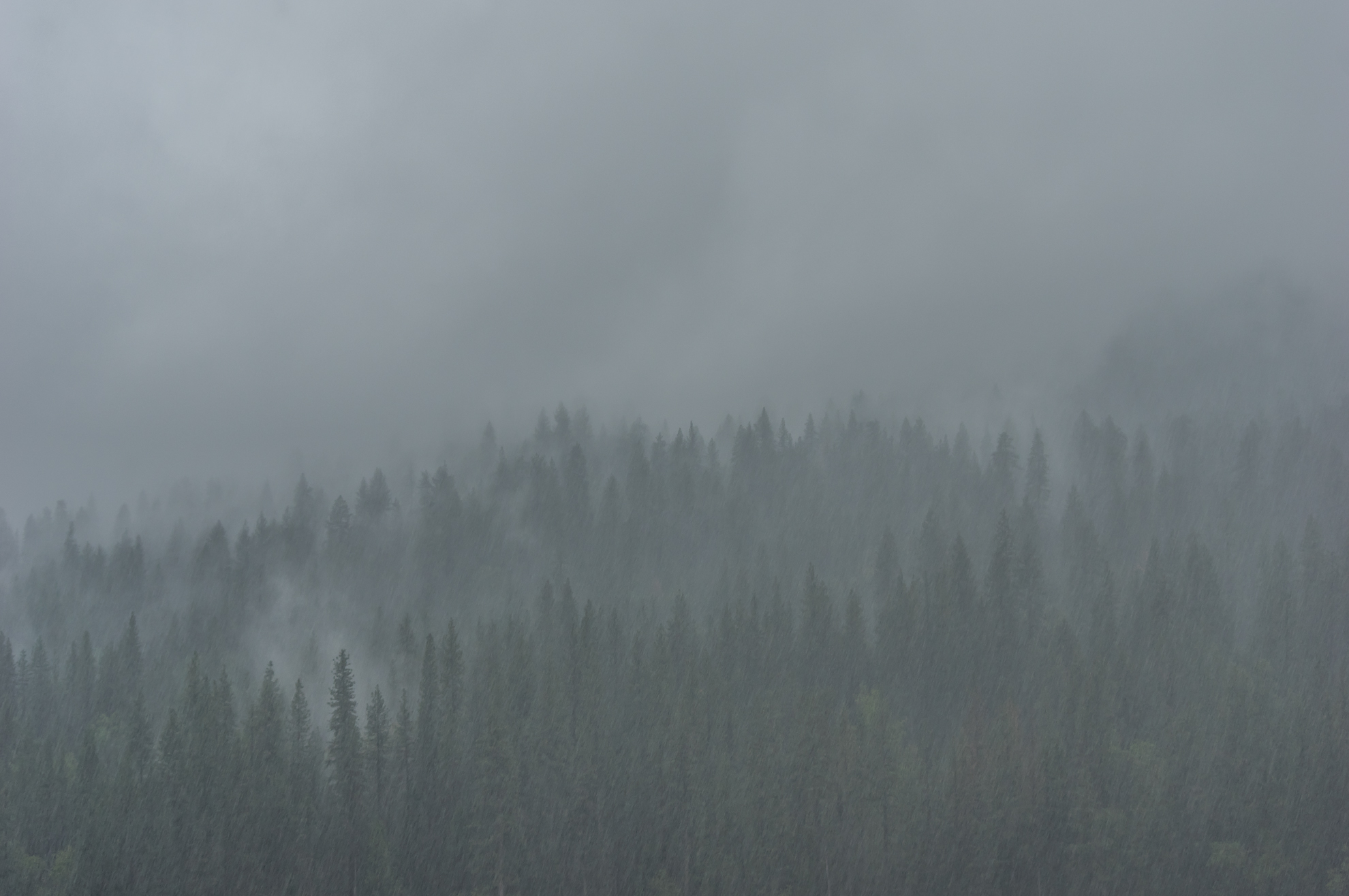 Tag 15 - Bad Weather Yosemite (131 von 133).jpg