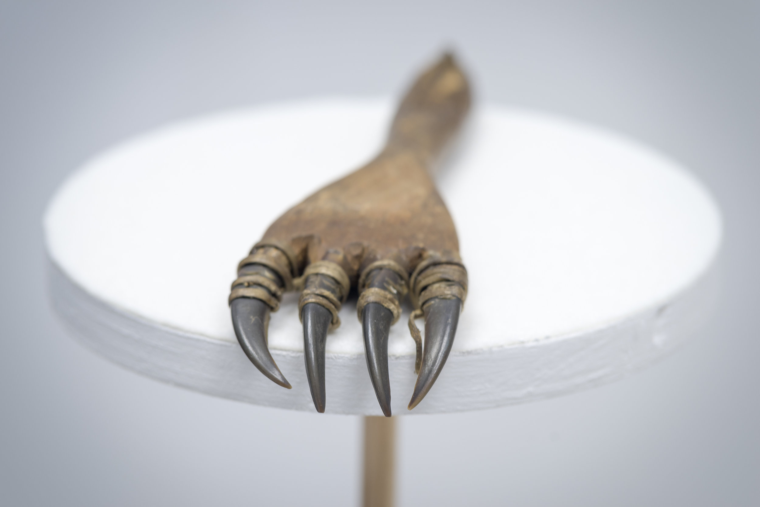 """Detail in der Ausstellung """"Die Menschen des Nordlichts"""""""