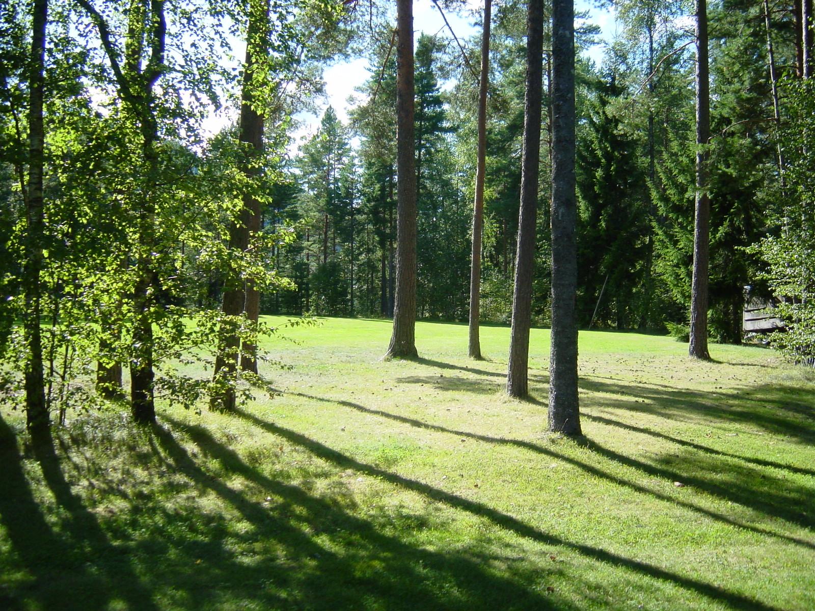 Hytte_Telnesøy_foto.JPG