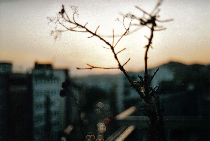 Sundown in Pforzheim