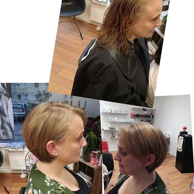 Befor#after#longhair#cut#hairstyle#new#lakmé# hårologi#hairdresser#frisørnagel#ballerup#