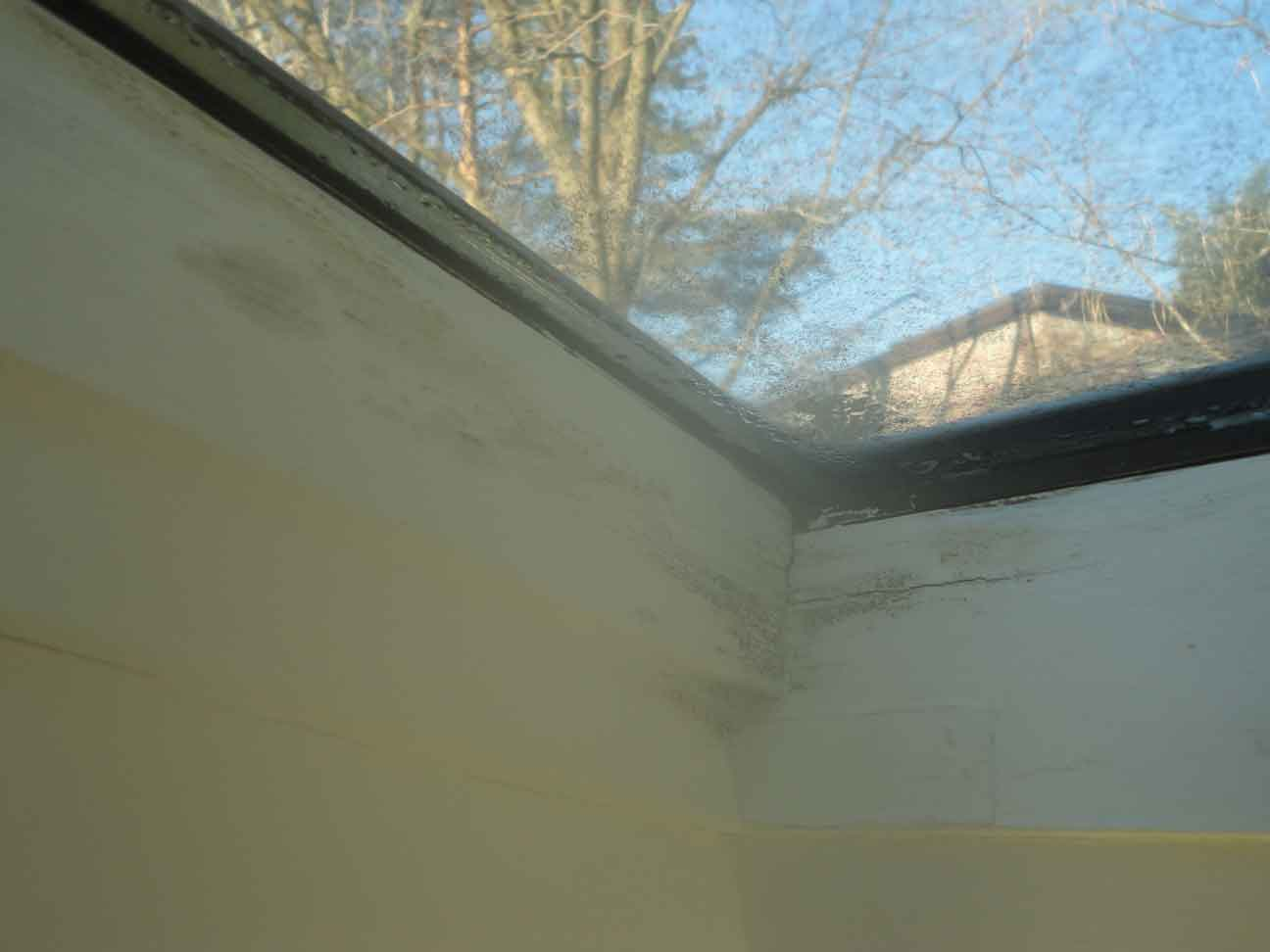 Inspection: skylight leaks and mold is found.