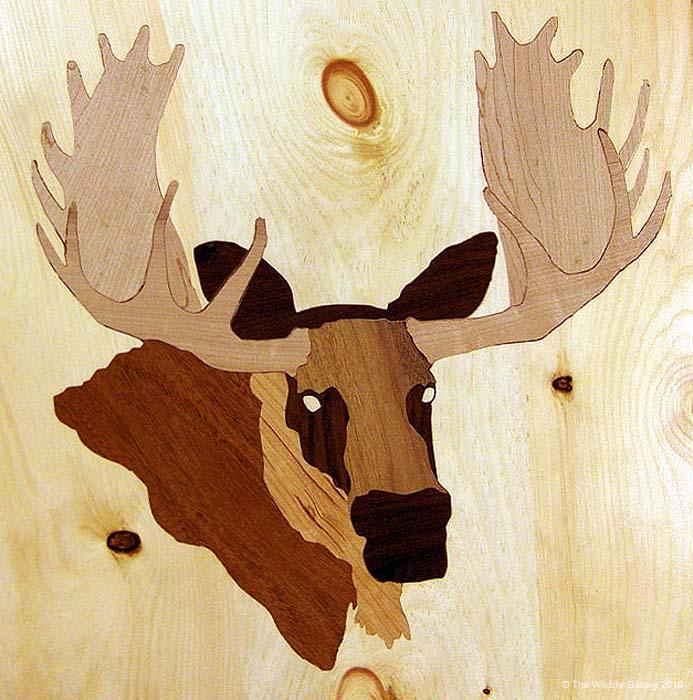 13 - jims-moose-door