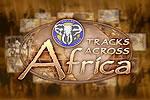 Logo - Tracks Across Africa.jpg