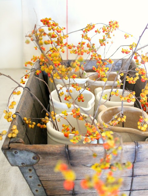 See what's on the menu for Autumn. Random Suds Blog | Soapworks Studio
