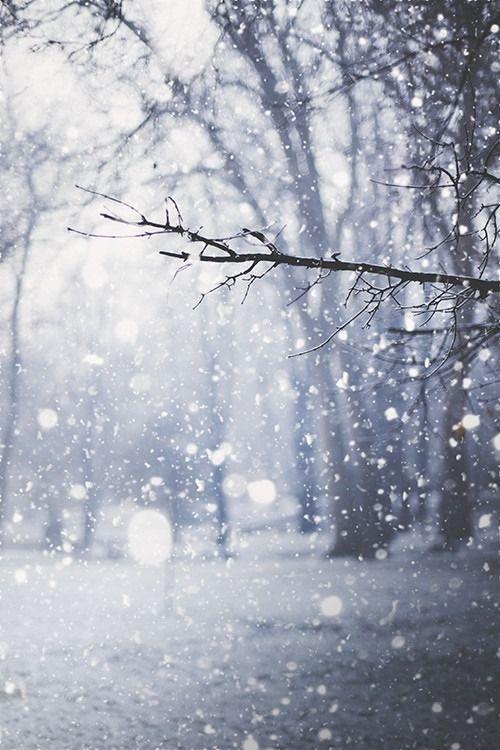 Winter2017.jpg
