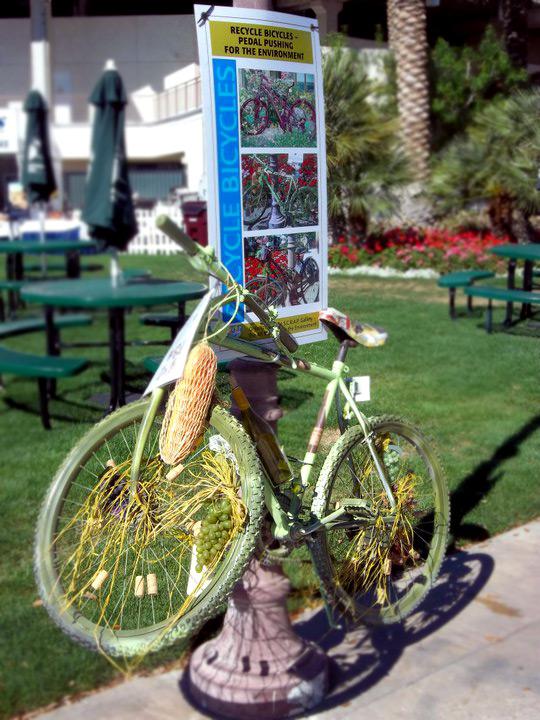 bike-chained.jpg