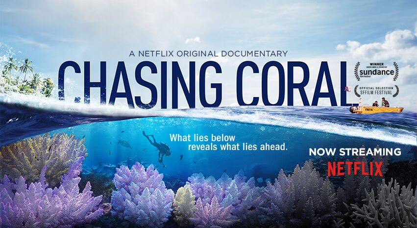 Chasing%20Coral%20Small%20Poster_preview.jpeg.jpg
