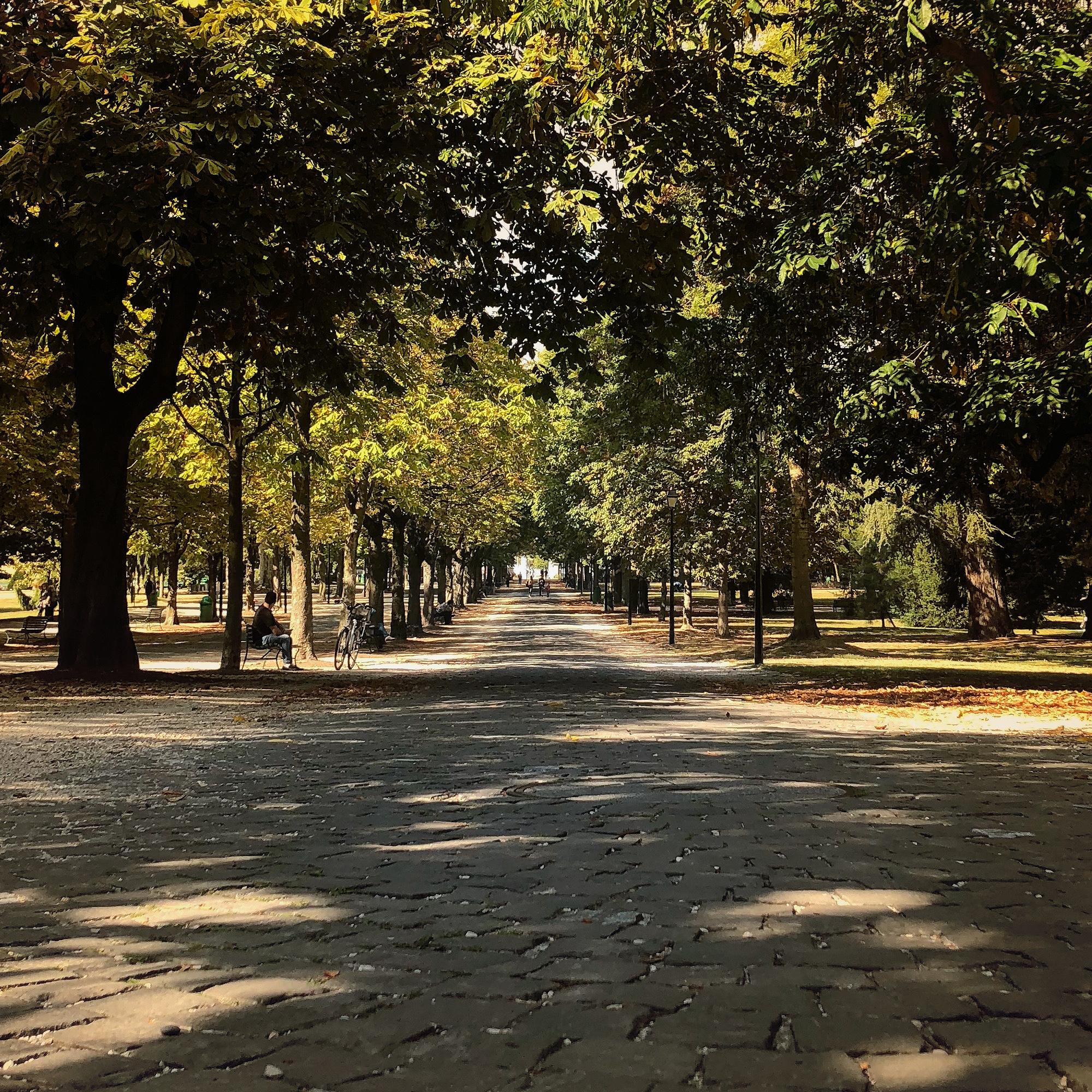 Geneva_Park.jpg