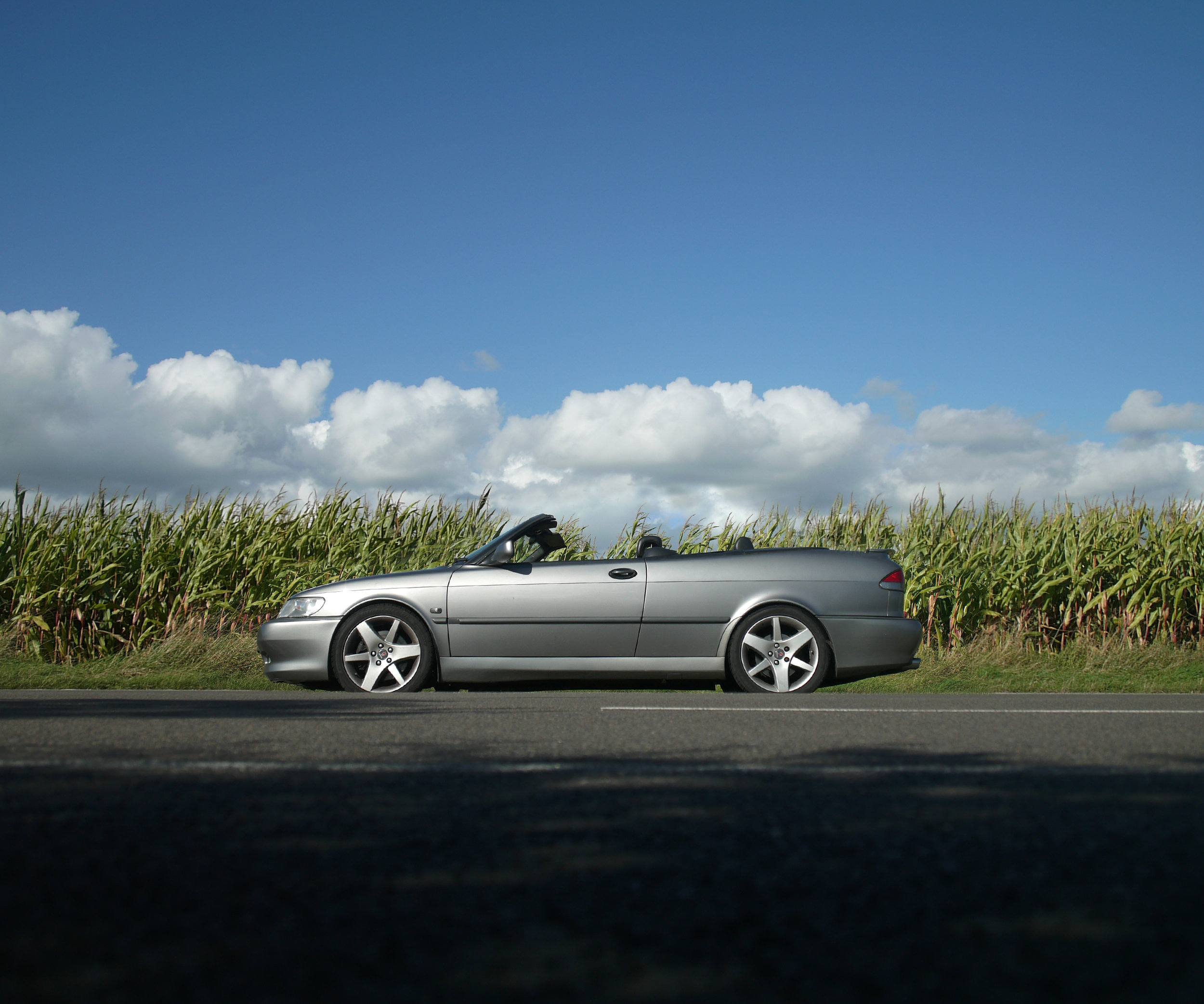 Saab Fields.jpg