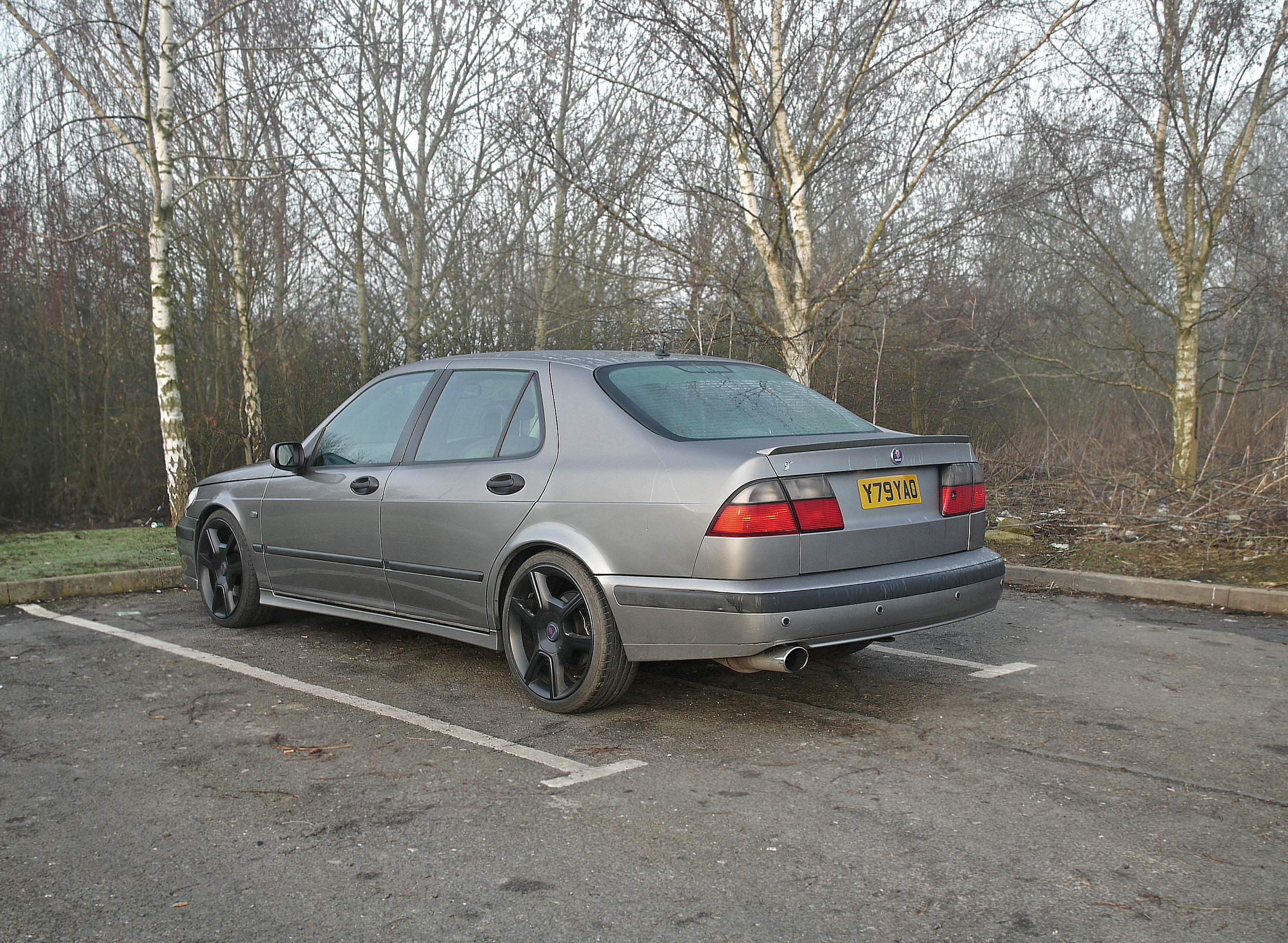 Saab 9-5_Morning After 3.jpg