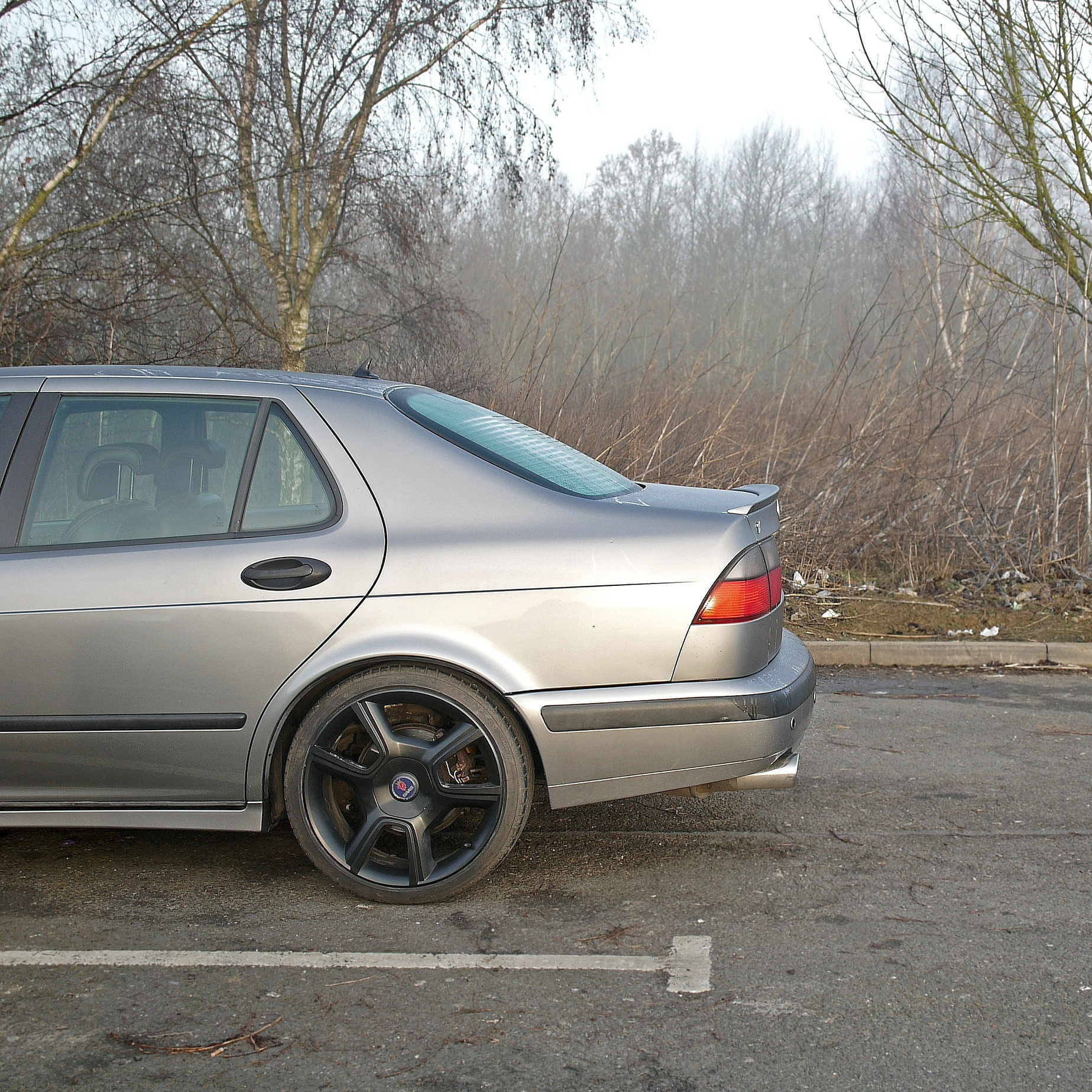 Saab 9-5_Morning After 5.jpg