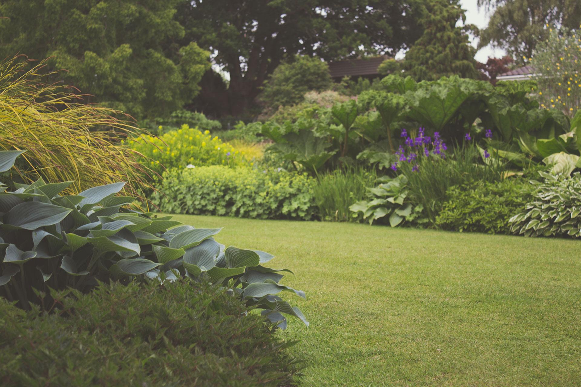 Zasadit dva stromy není taková věda, ale naplánovat zahradu, aby pěkně rostla a splňovala to, co od ní čekáme, tedy nejen stále jen dřinu, už tak snadné není. Většinou od zahrady chceme, aby byla zajímavá během celého roku a rostlinám se na ní dařilo.