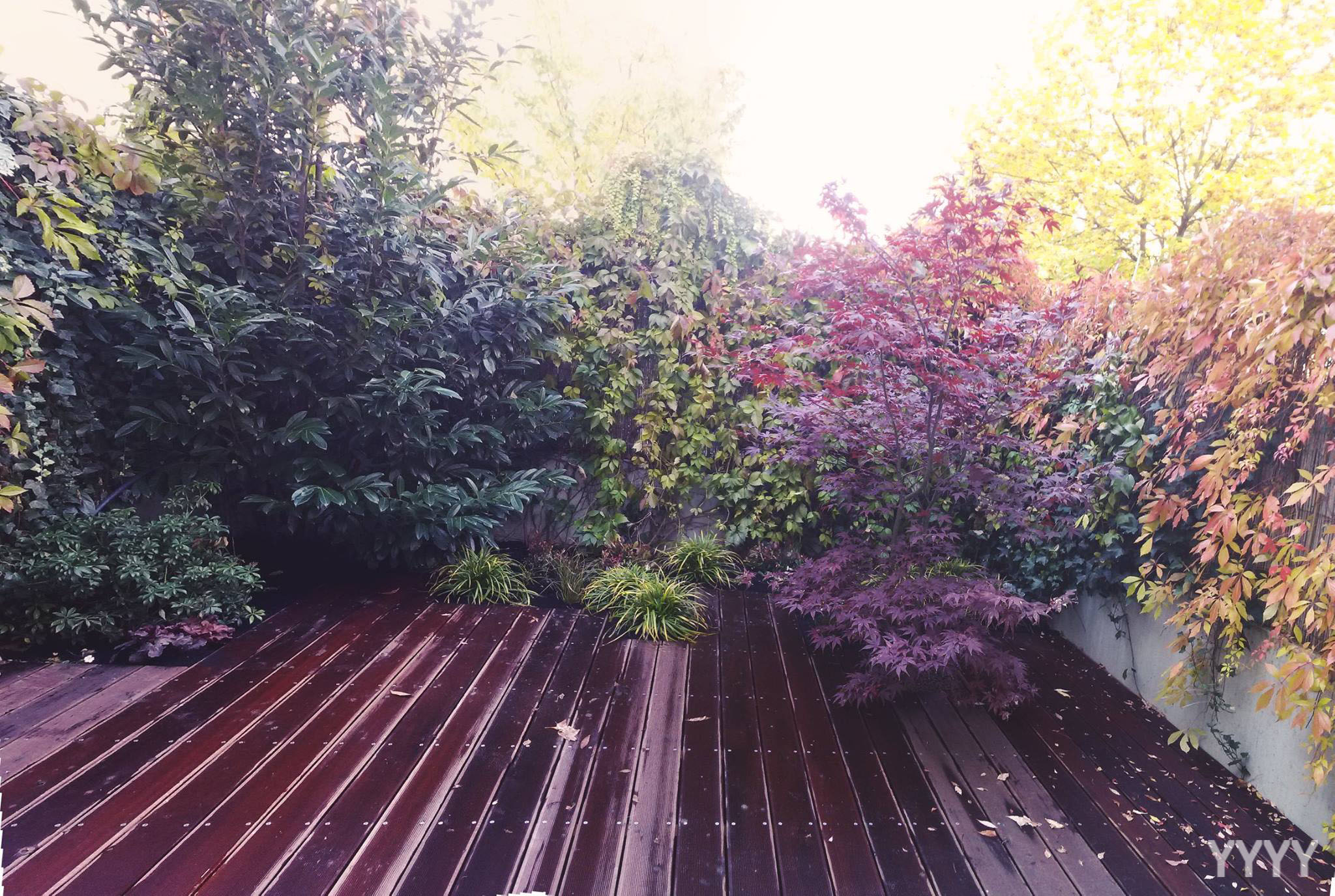 Malá zahrada by měla obsahovat jen to nejdůležitější a být dotažená do posledního detailu. (zahrada na rozloze 40m2)